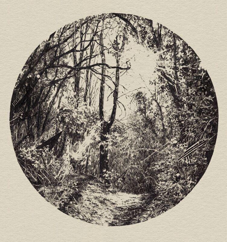 Forest 2 - WGC