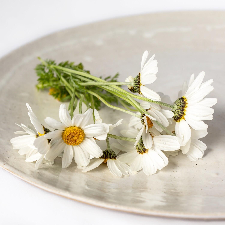 Cornish stoneware platter