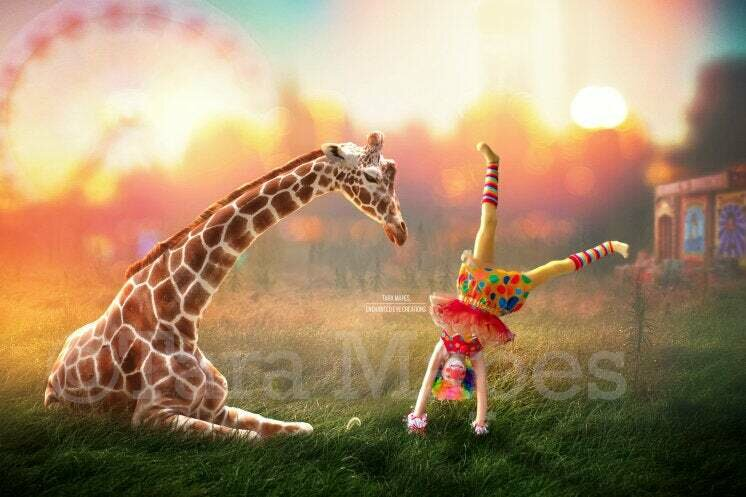 Giraffe Baby at Circus - Baby Giraffe Sitting Laying on Fairgrounds - in Field - Digital Background / Backdrop