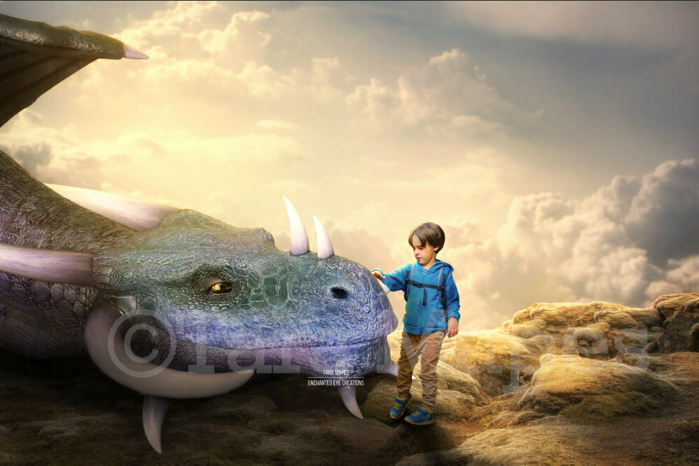 Smiling Blue Dragon Laying on Rocks Friendly Dragon Digital Background / Backdrop