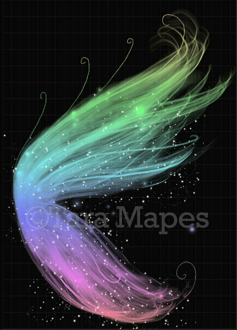 Rainbow Wings PNG Glitter Sparkly Fairy Wing - Fairy Wing Overlay - Fairy Wing Overlay - Fairy Digital Wing PNG