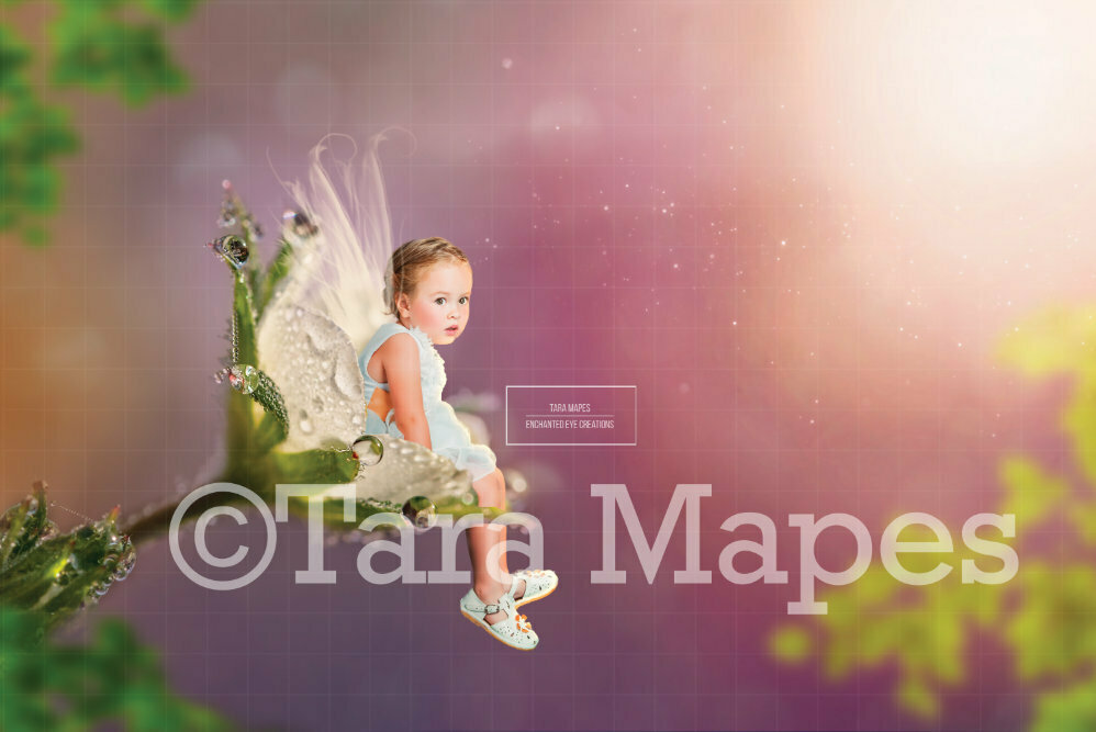 Fairy Sitting in Flower TWO PACK Digital Background