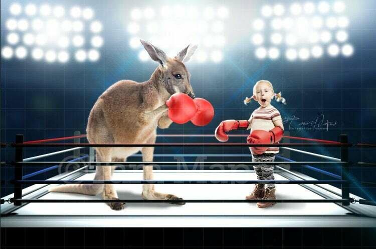 Boxing Kangaroo Digital Background / Backdrop