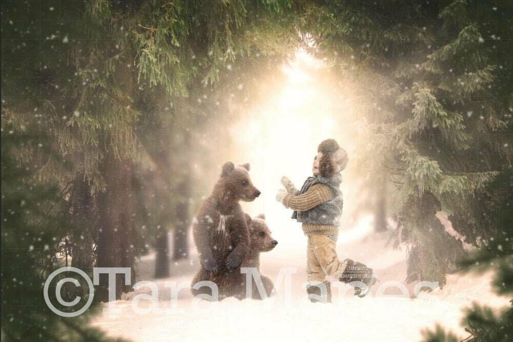 Baby Bears in Snowy Forest - Winter Scene - Holiday Christmas Digital Background Backdrop