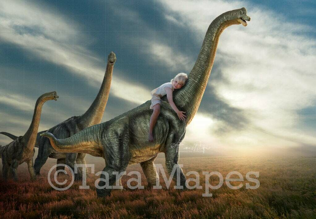 Dinosaurs in Field - Nice Dinosaurs at Sunset Digital Background / Backdrop