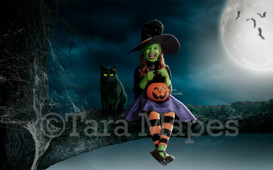 Black Cat - Halloween Tree - Witch Branch - Branch at Night with Black Cat - Witch Halloween Digital Background Backdrop