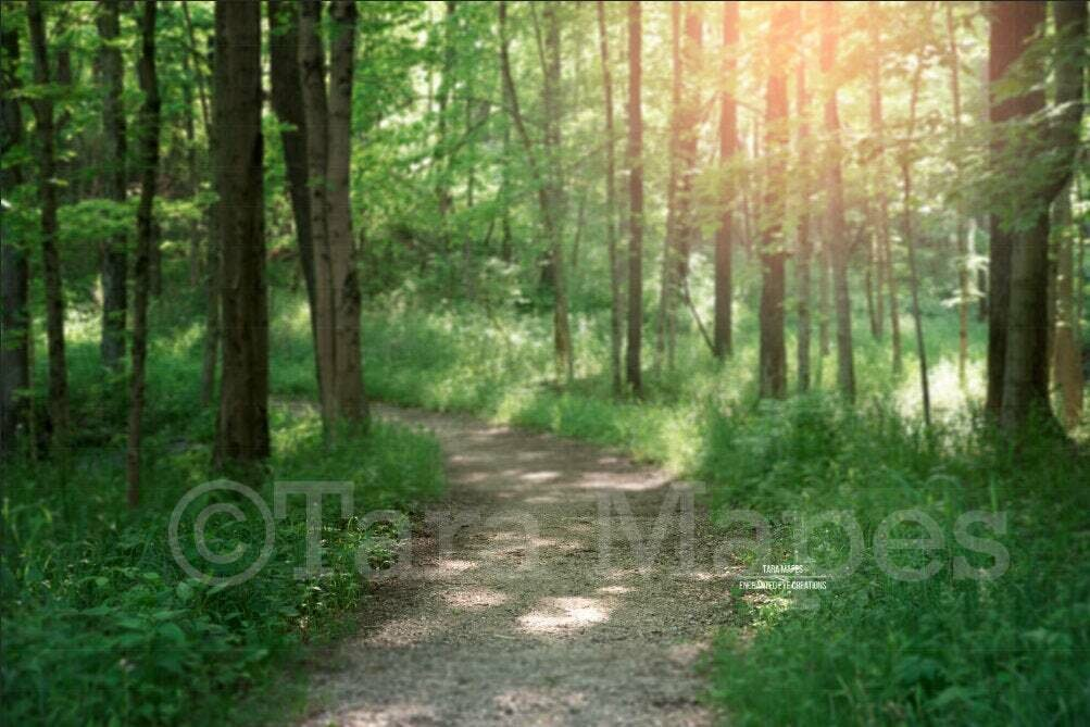 Forest Path in Woods, Dirt Path Country Nature Digital Background Backdrop