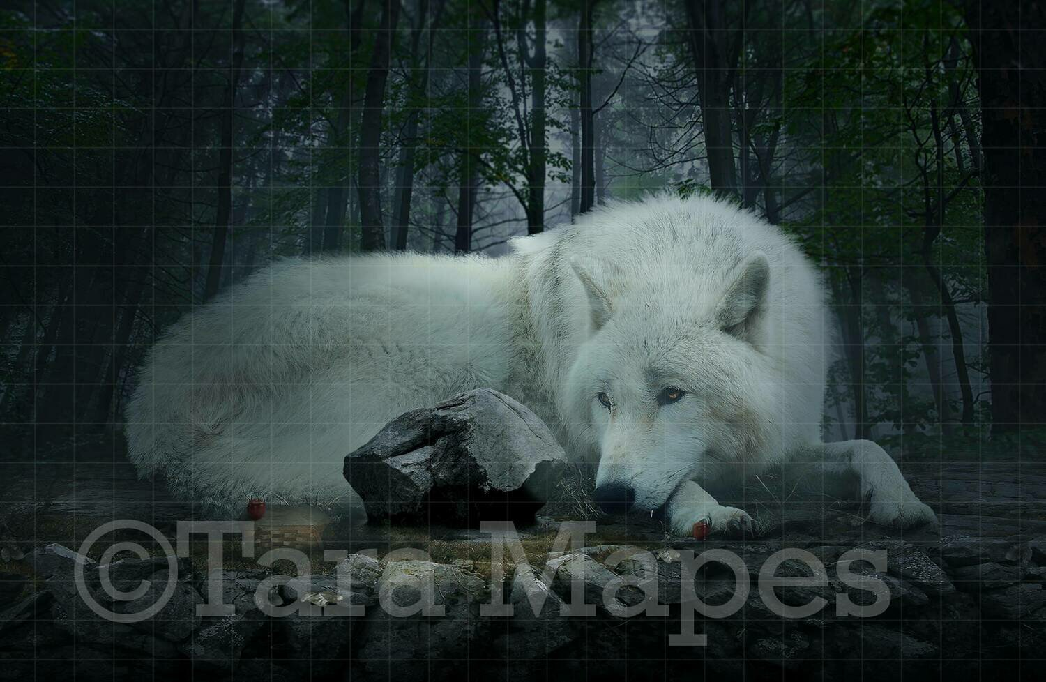 Little Red Riding Hood in Forest with Wolf Digital Background