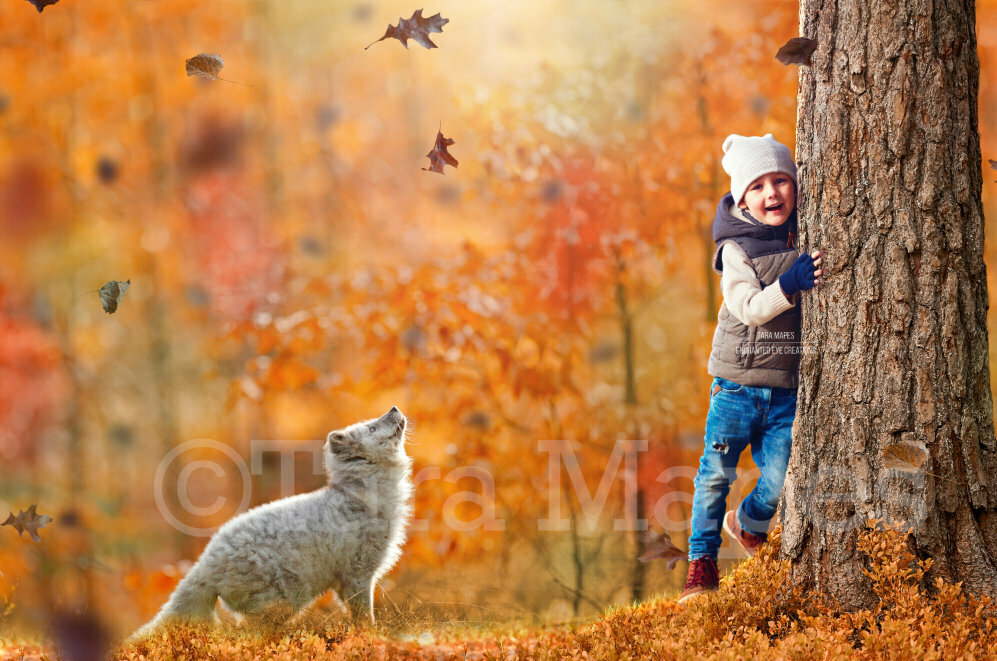 White Fox by Tree in Forest Autumn Fall Leaves Digital Background Backdrop