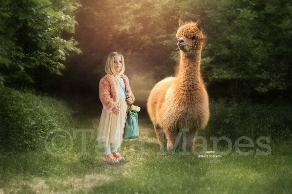 Brown Baby Alpaca in Forest Digital Background - Alpaca digital backdrop - Funny Sweet Digital Background Backdrop