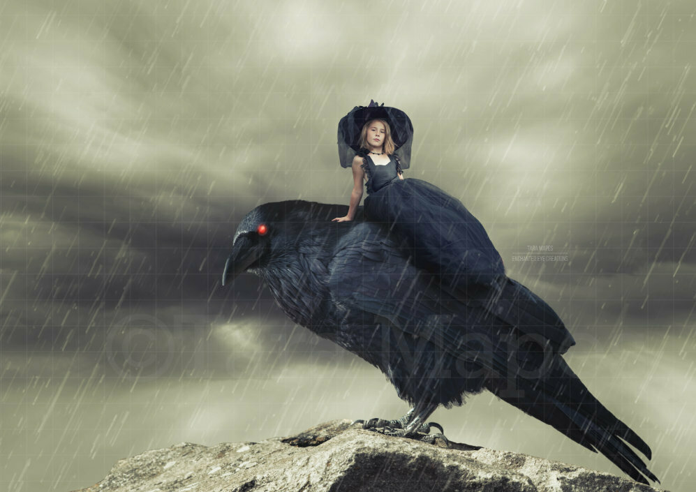 Crow with Red Eyes Halloween Digital Background Backdrop