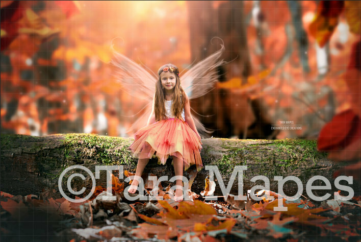 Fairy Log in Magical Autumn Fall Forest Digital Background / Backdrop