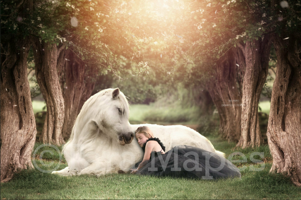 White Horse in Creamy Tree Tunnel Digital Background / Backdrop