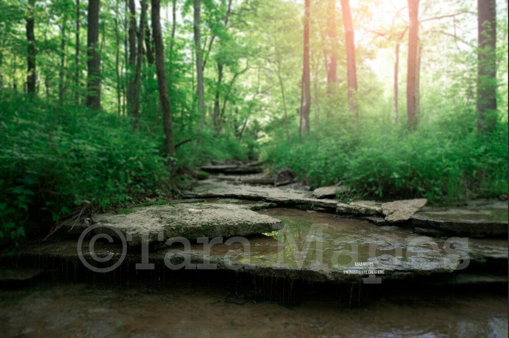 Creek Rocks in Woods Nature Digital Background Backdrop