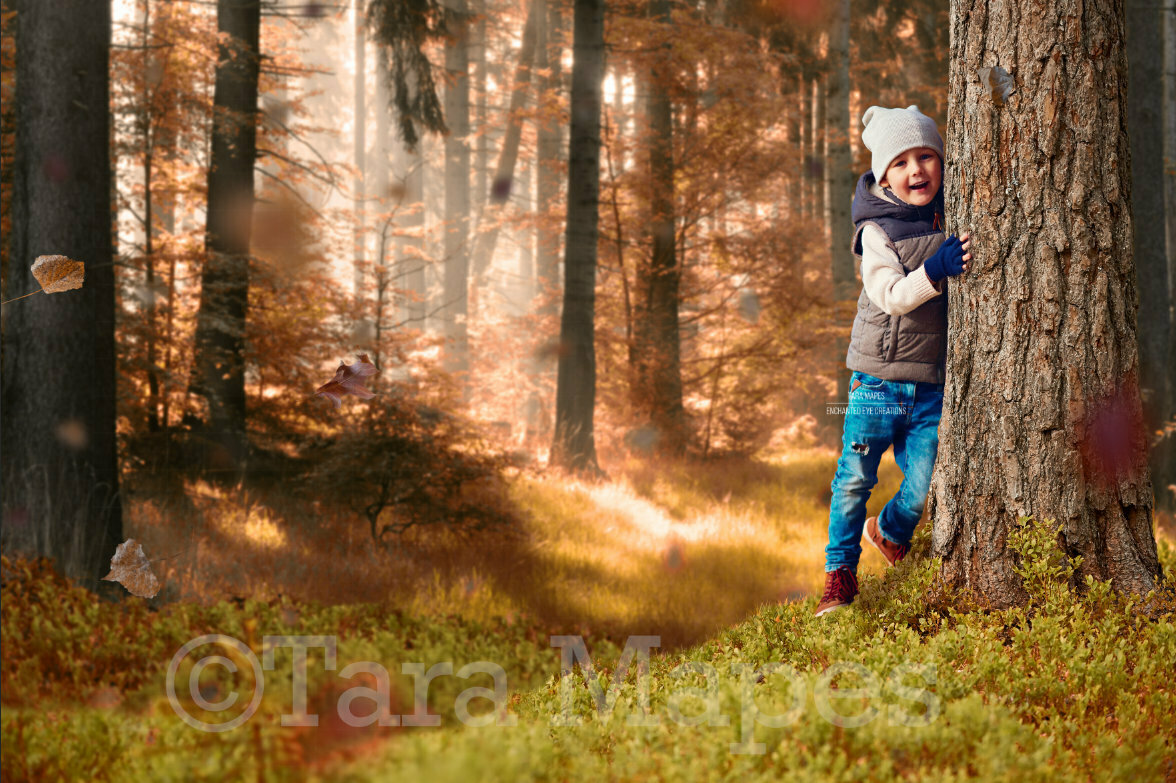 Fall Forest Autumn Fall Leaves Digital Background Backdrop