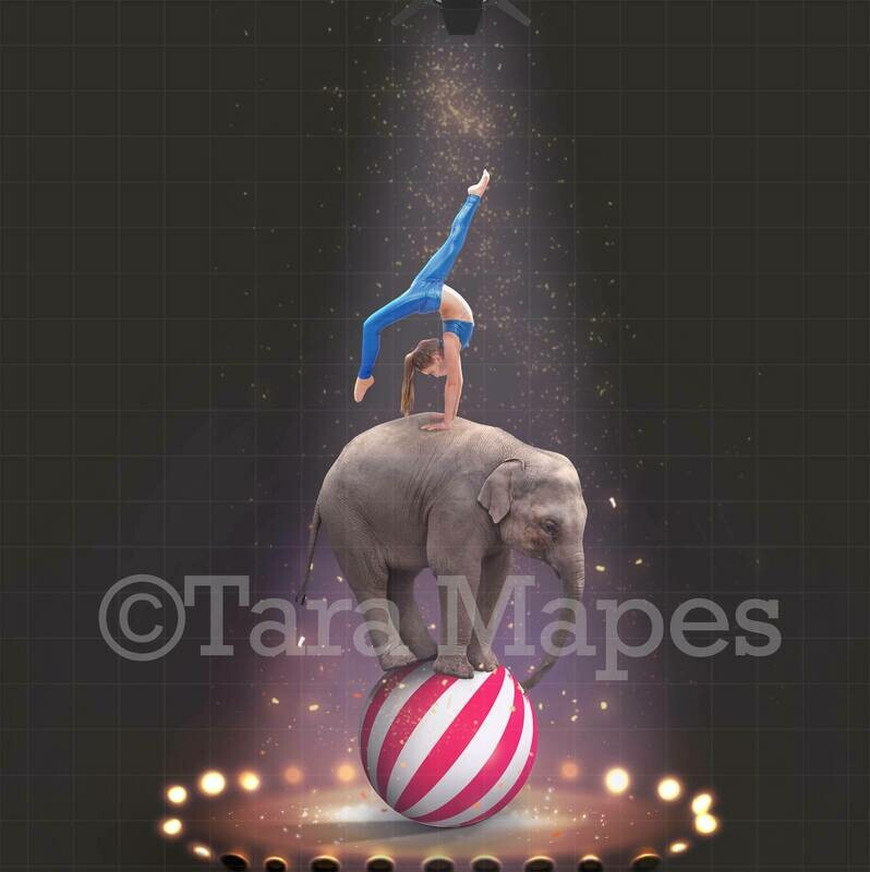 Baby Circus Elephant on Ball Digital Background
