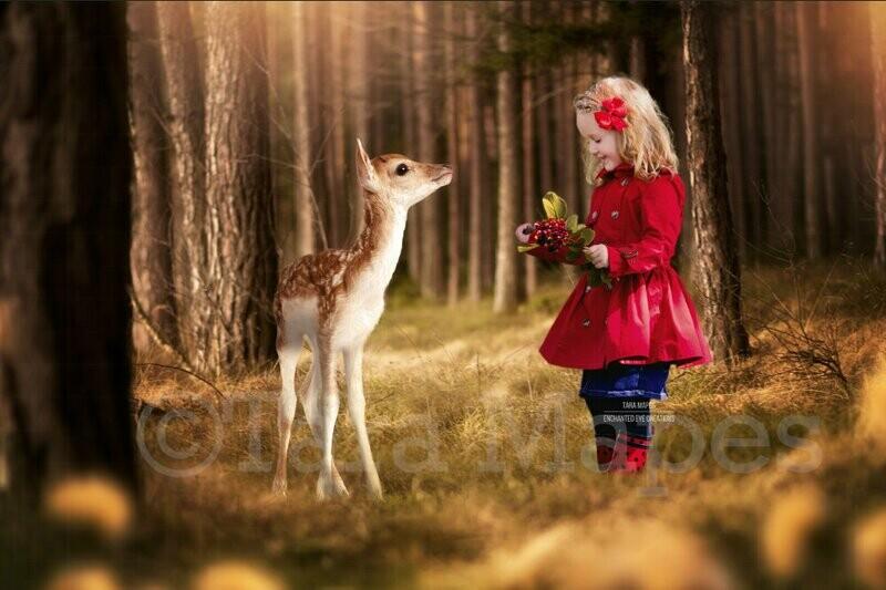 Baby Deer in Spring Forest - Creamy Forest - Digital Background Backdrop