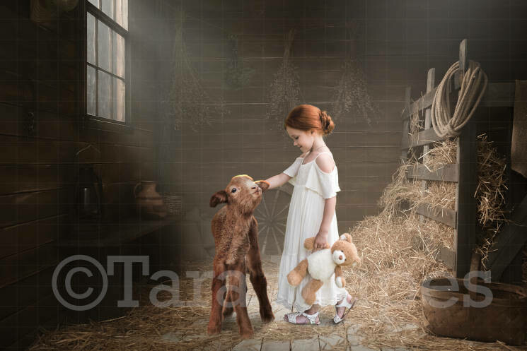 Baby Goat in Barn with Hay Digital Background