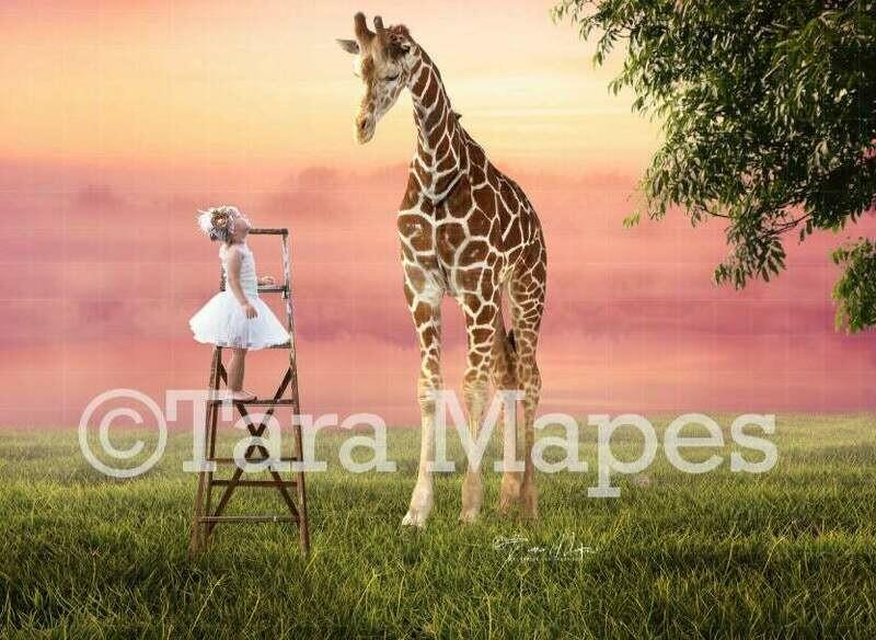 Baby Giraffe and Ladder Digital Background / Backdrop