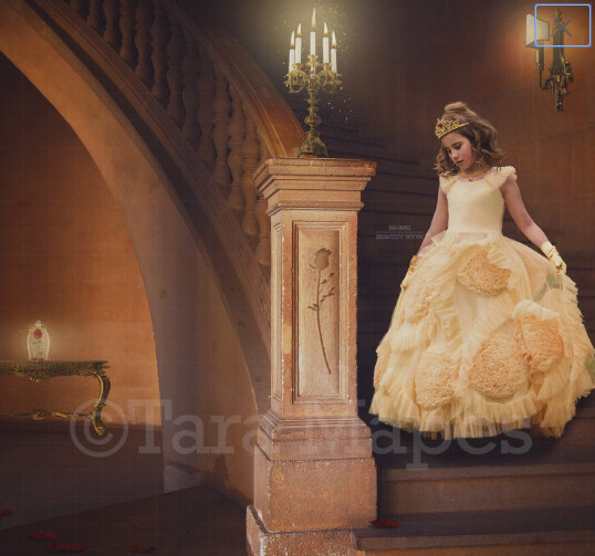 Princess Castle Staircase with Magic Rose Digital Background Backdrop Photoshop
