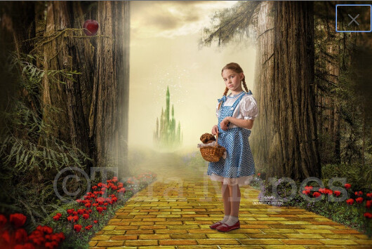 Yellow Brick Road - Wizard of Oz -  Enchanted Forest - Digital Background