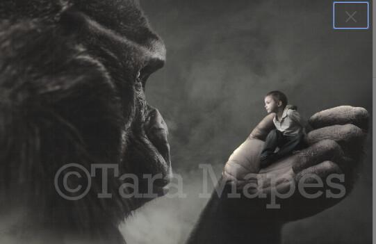 Big Monkey Ape by Balcony Digital Background / Backdrop Digital Background Backdrop