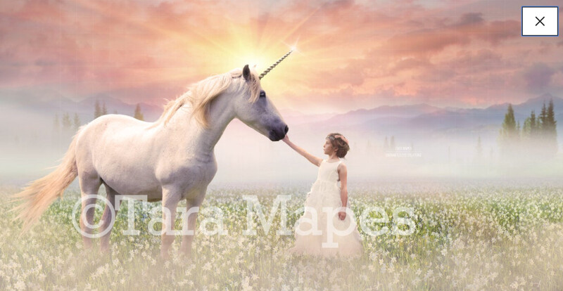 Unicorn Digital Background - Magical Horse in Flowering Field at Sunrise Digital Background