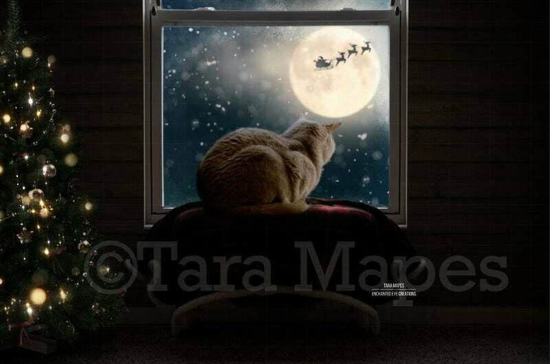 Christmas Window Seat for Cat Dog  - Animals - Cat Bed- Dog Seat - at Window Sill - Santa in Moon Digital Background Backdrop