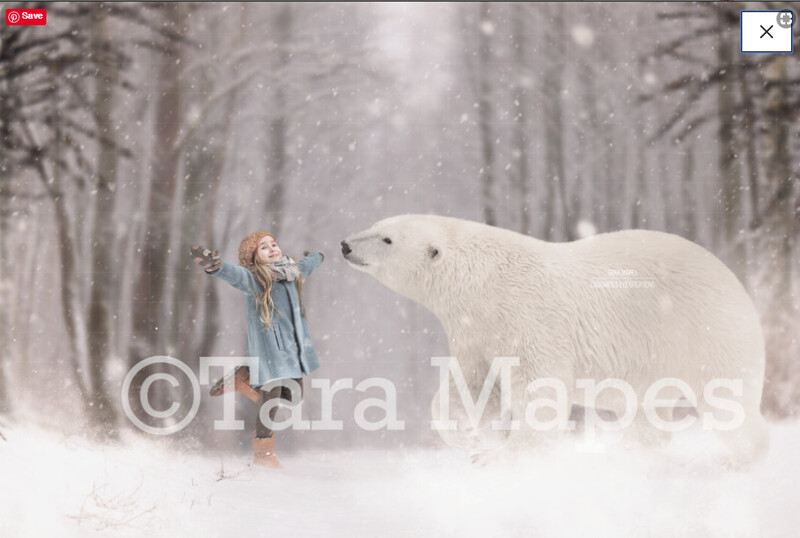 Polar Bear Snowy Scene Winter Digital Background Backdrop