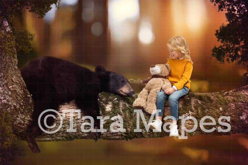 Baby Bear on Branch Digital Background / Backdrop