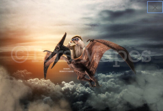 Pterodactyl- Flying Dinosaur Digital Background Backdrop