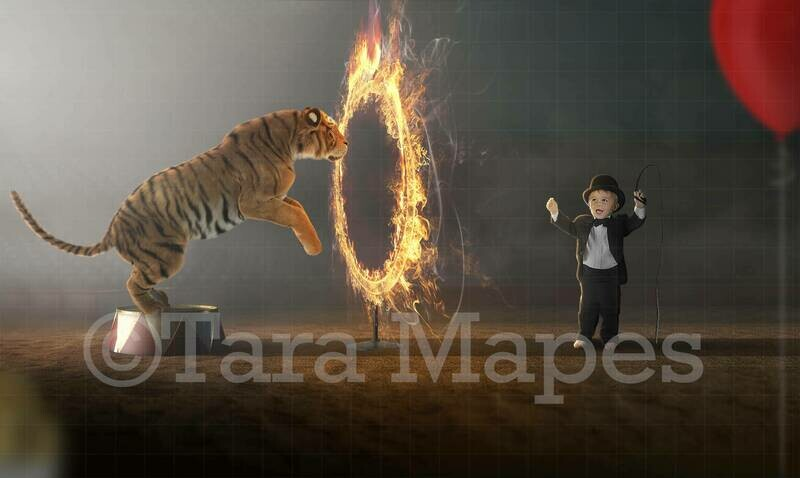 Circus Tiger Jumping Through Fire Ring Digital Background