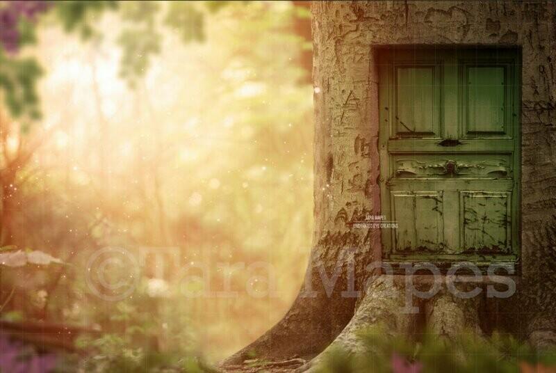 Fairy Door in Tree Photoshop Digital Background / Backdrop