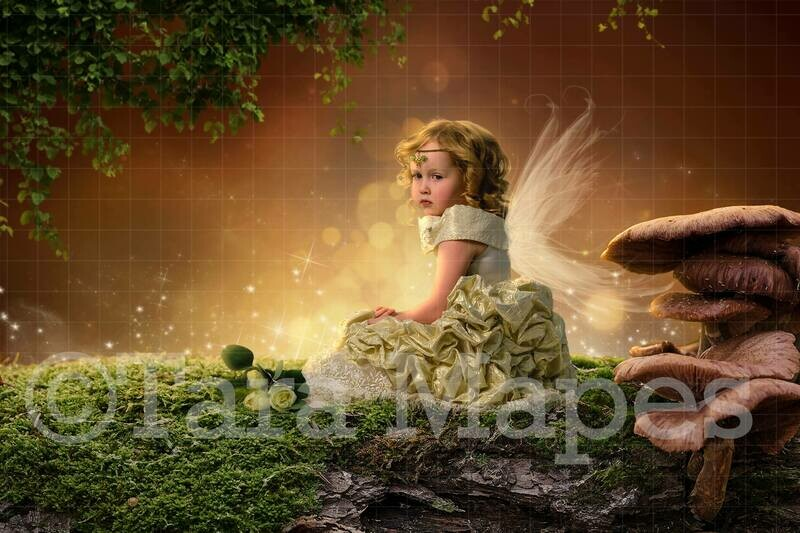 Fairy Log Digital Background