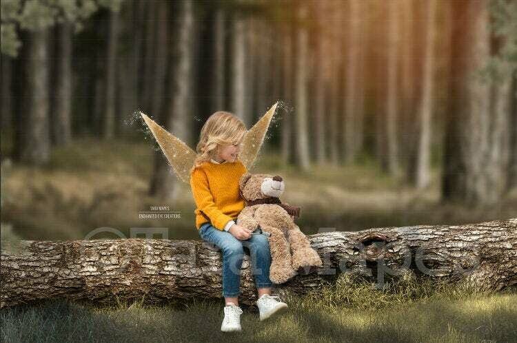Fairy Log in Forest with Sunlight Digital Background Backdrop