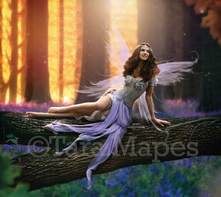 Fairy Log in Magical Bluebell Forest Digital Background / Backdrop