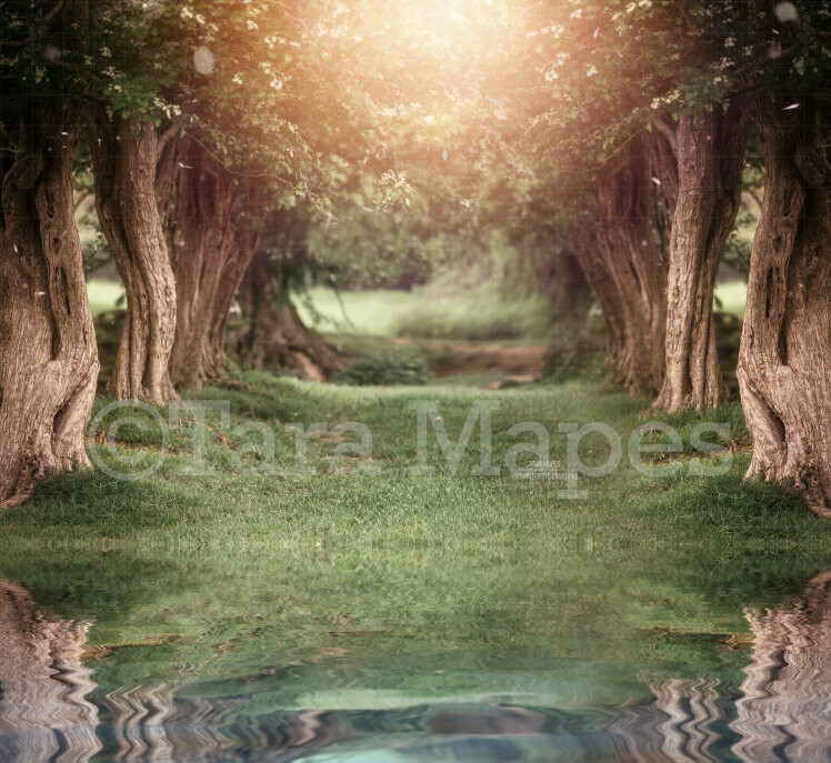 Creamy Tree Tunnel - Spring Easter Setting - Lake Digital Background / Backdrop