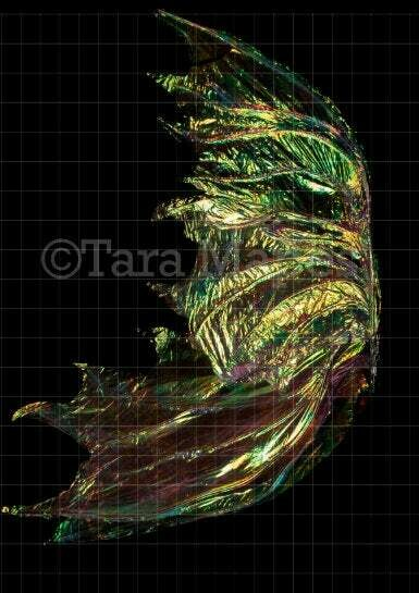 Iridescent Gold Wispy Fairy Wing Overlay - Rainbow Glittery Fairy Wing Overlay - Fairy Digital Wing - Sparkles Fairy Wing