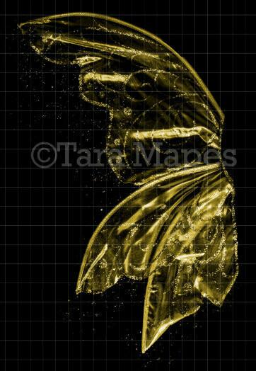 Gold Glitter Fairy Wing Overlay - Rainbow Glittery Fairy Wing Overlay - Fairy- Digital Wings - Sparkles Fairy Wing