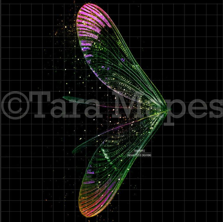 Rainbow Glitter - Wispy Fairy Wing Overlay - Rainbow Glittery Fairy Wing Overlay - Digital Wings - Sparkles Fairy Wing Overlay