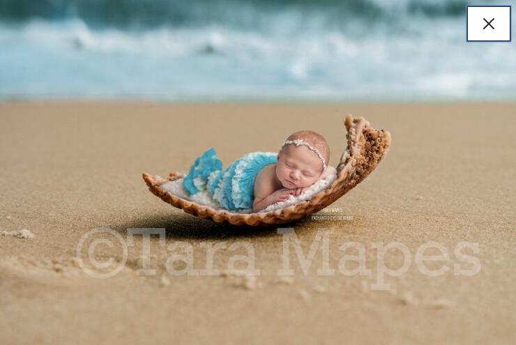 Mermaid in a Shell Newborn Digital Background Backdrop