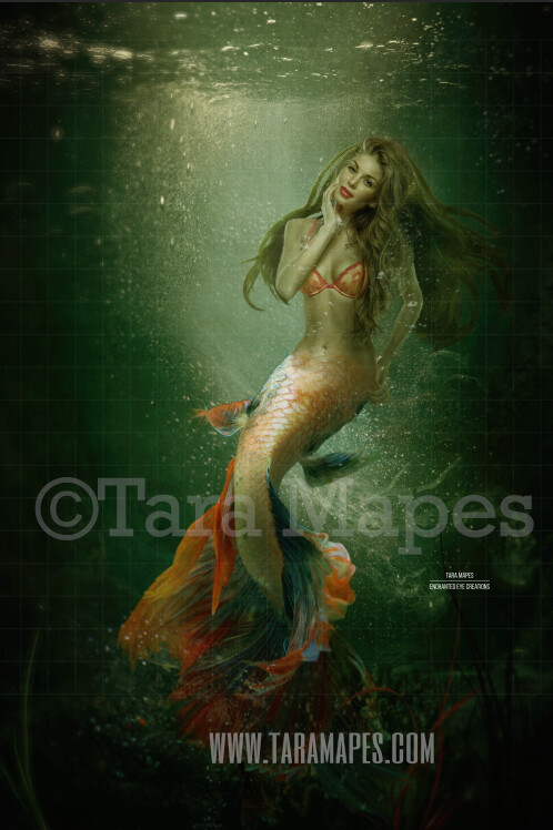 Realistic Dark Mermaid Underwater - Layered PSD Mermaid Digital Background Backdrop - Separate Element Layers -Tail Layer is Separate