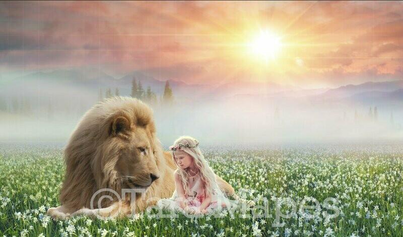 Lion in Field of Flowers Digital Background