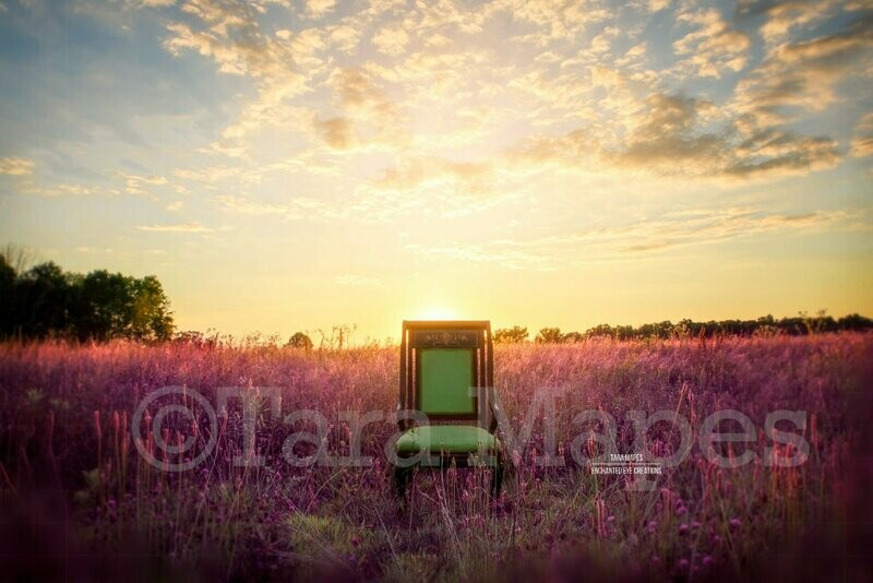 Green Antique Nature Chair in Purple Field - Lavender - Nature - Fairy Chair- Creamy Nature Background Backdrop