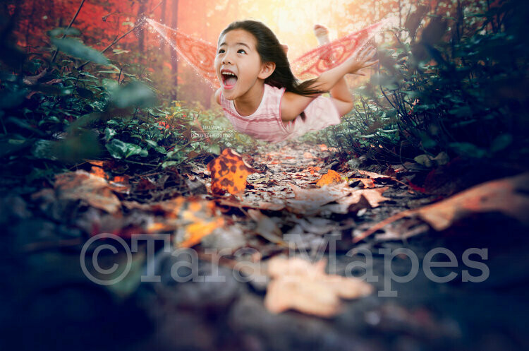 Magic Forest Path for Fairy or Forest Creatures Digital Background / Backdrop