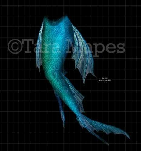 Mermaid Tail Overlay - Mermaid Tail - Mermaid Fin - PNG  overlay