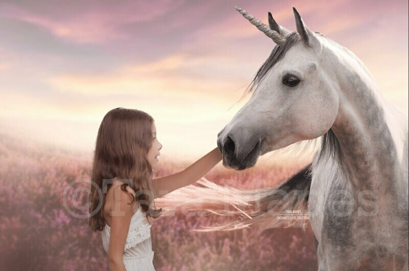 Unicorn Close Up in Field of Heather Violet Flowers with Sun - Pet Unicorn Creamy Digital Background Backdrop