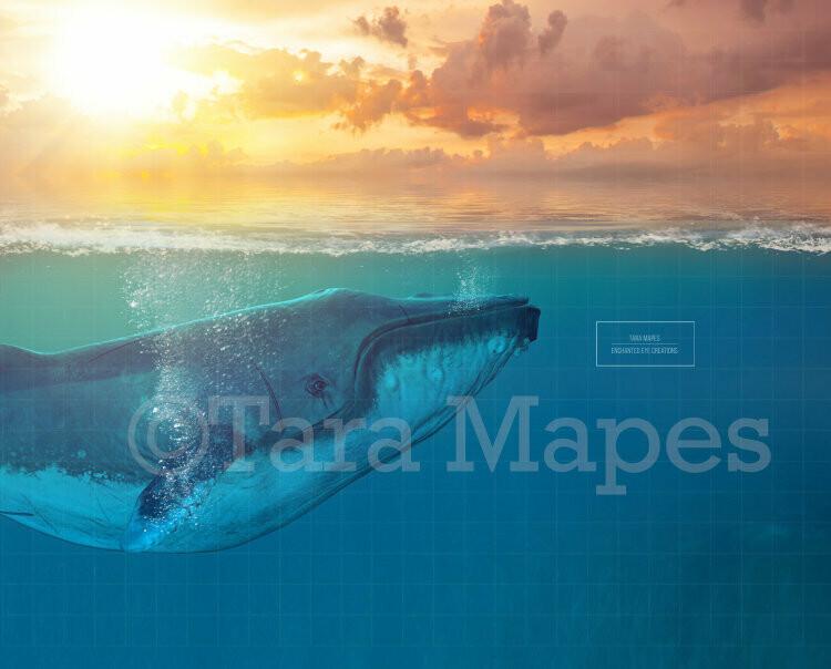 Whale in Ocean Digital Background Backdrop