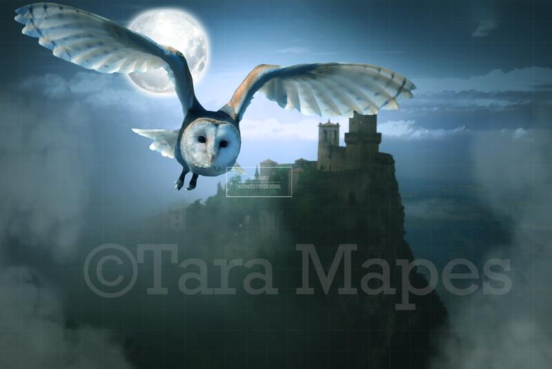 Owl by Castle - Castle at Night Scene Digital Background / Backdrop