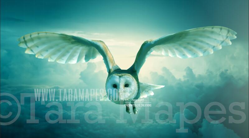 Owl in sky - Owl Flying Scene Digital Background / Backdrop